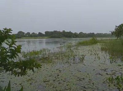 Parque Ecológico da Lagoa Comprida em Aquidauana