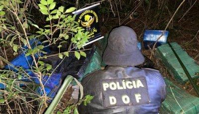 Droga estava em matagal. (Foto: Divulgação).