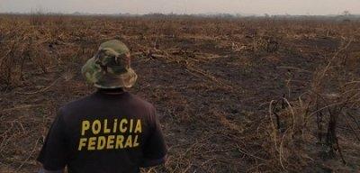 Operação apura incêndios criminosos no Pantanal (Foto: PF)