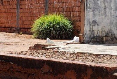 Local onde a vítima foi assassinada   Foto: Rodrigo Santos   Repórter Ribas